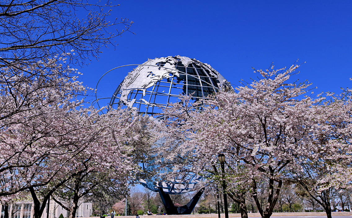 Celebrate cherry blossoms in Flushing Meadows with traditional Japanese arts and a tea ceremony